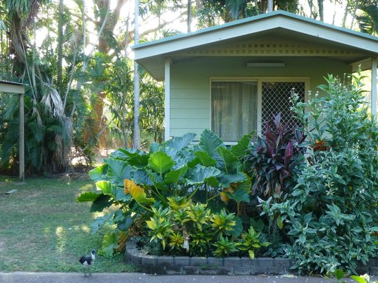 Darwin FreeSpirit Resort : Resort cabin