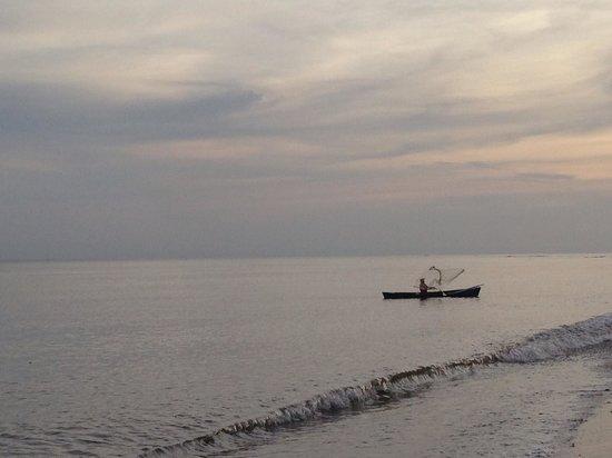 Casa de Tranquilidad: Beach view