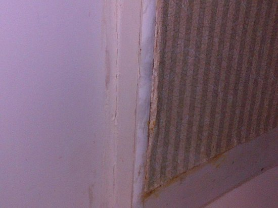 Holiday Inn Reynosa Zona Dorada : tapiz en mal estado