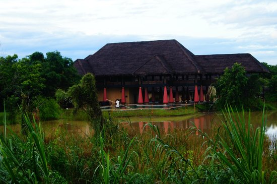 Jetwing Vil Uyana: Resturent and pool area..