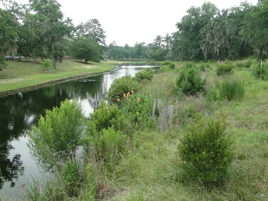 Magnolia Springs Park Millen 2019 All You Need To Know