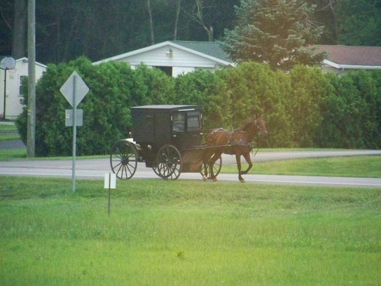 The Van Buren Hotel at Shipshewana: Amazing views of traditional Amish folk