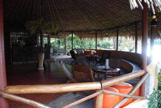 Jungle Rudy's Ucaima Camp: Añade un título