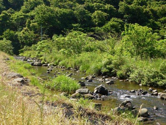 Sado Nishimikawa Gold Park: なんとはない小川でもせせらぎがすばらしい