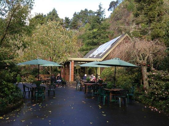 Eden Garden: カフェ