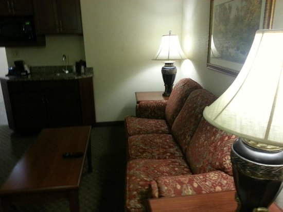 Drury Plaza Hotel St. Louis - Chesterfield: Roomy and the pull out couch was pretty comfy