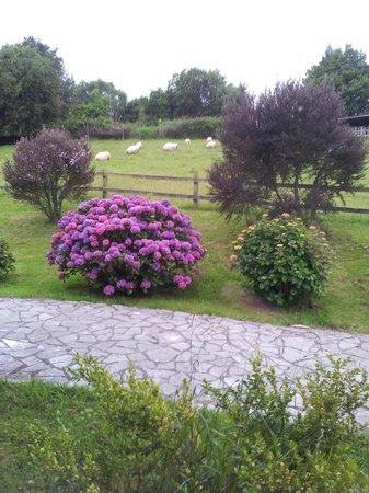 Hotel Rural Paraje del Asturcon: Exteriores