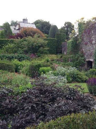 The Garden House: The Walled Garden (June 2013)