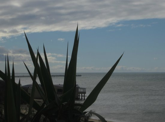BreakFree Great Sandy Straits: Underwater World and the Urangan Pier