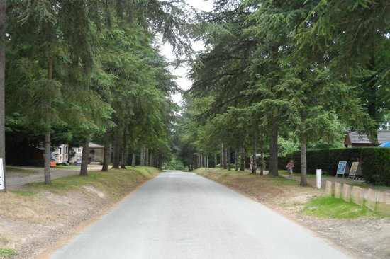 La Garangeoire: entrance avenue