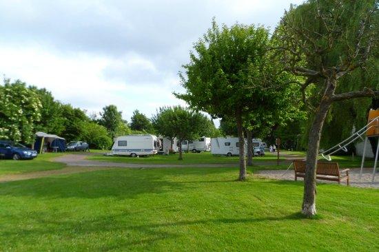 Chateau de Martragny: campsite