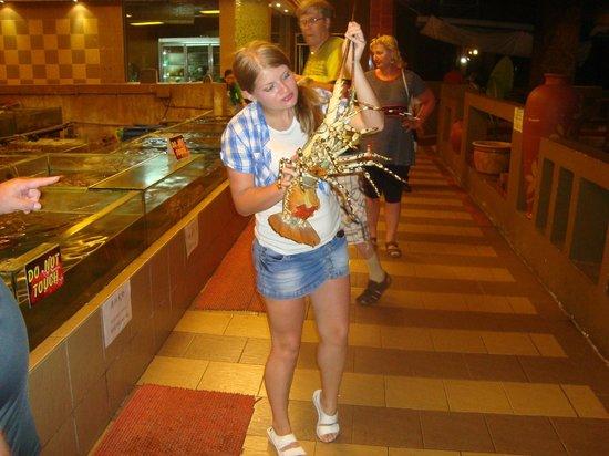 Ocean Seafood Village: Этот лобстер стал моим ужином! =)
