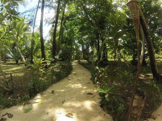 Lissenung Island Resort: Beautiful, lush tropical grounds