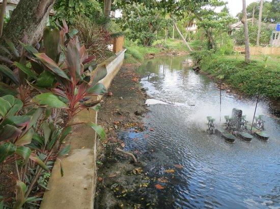 Zara Beach Resort: Sicht von der Brücke auf den River