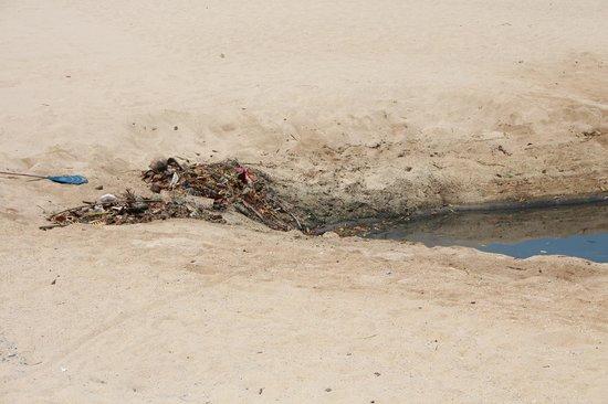 """Zara Beach Resort: jeden Morgen sammelt sich Abfall an der """"Zunge"""" des Rivers"""