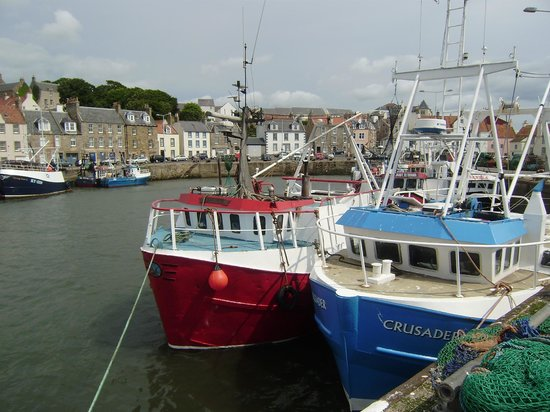 Pittenweem Fish and Chip Bar: Harbour at Pittenweem