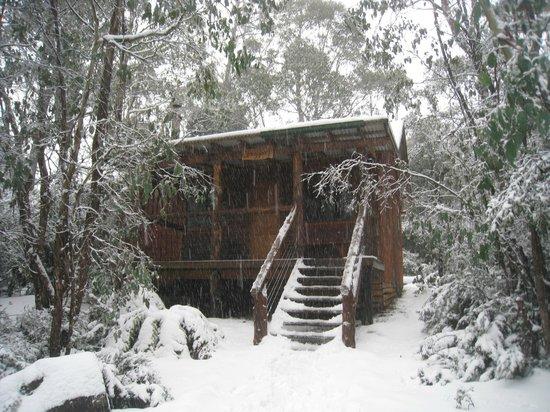 Cradle Mountain Highlanders Cottages: Stringybark Cottage