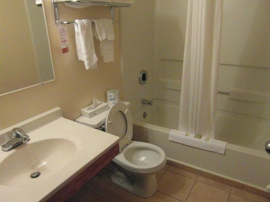 Super 8 Spirit Lake/Okoboji: Clean bathroom