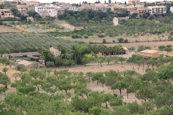 Agroturismo S'Hort De Son Caulleles : Blick aus den Olivenhainen auf die Finca