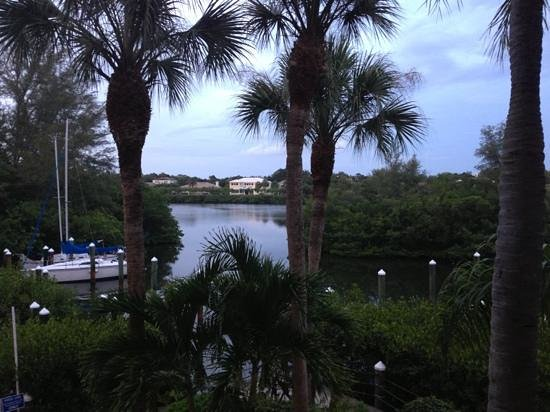Longboat Bay Club: view from our balcony