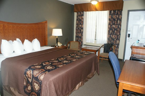 Raintree Inn: Room