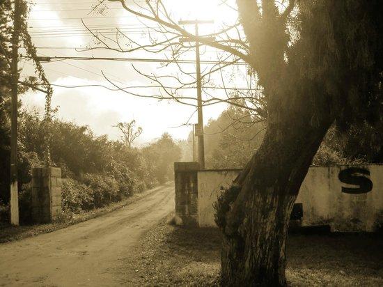 Gravatai, RS: Entrada Seminário