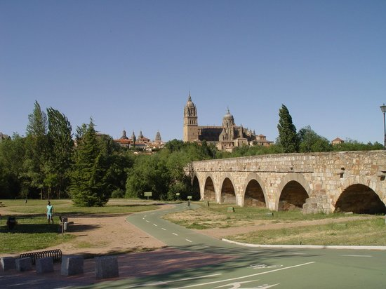 JCH Aparthotel Congreso: View of the University, Church and Roman Bridge from the South Side of the River