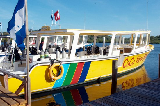 CoCo View Resort: Plenty of room on each dive boat. Dive boats are in top condition