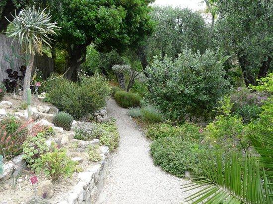 Jardin Botanique et Exotique Val Rahmeh : Garten zum Genießen