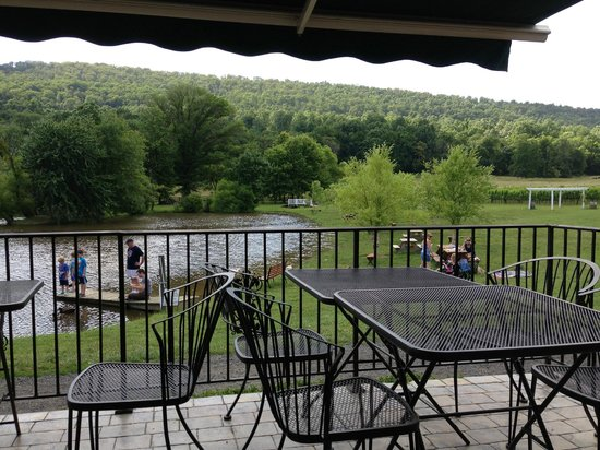 Doukenie Winery: View from Heritage Club patio to your right