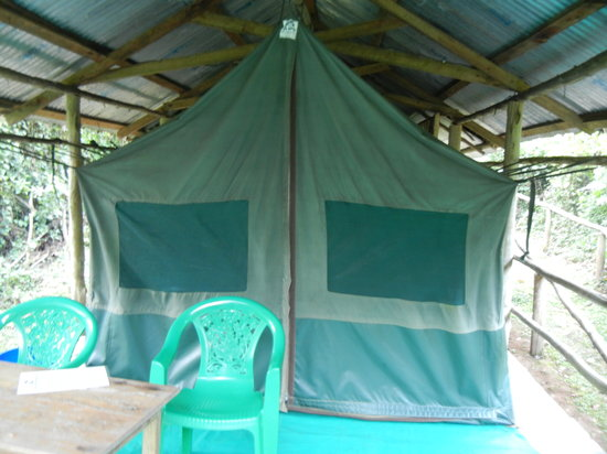 The Buhoma Community Rest Camp: Outside our tent