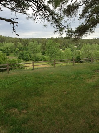 Madison Ranch - Bed and Breakfast : Pasture