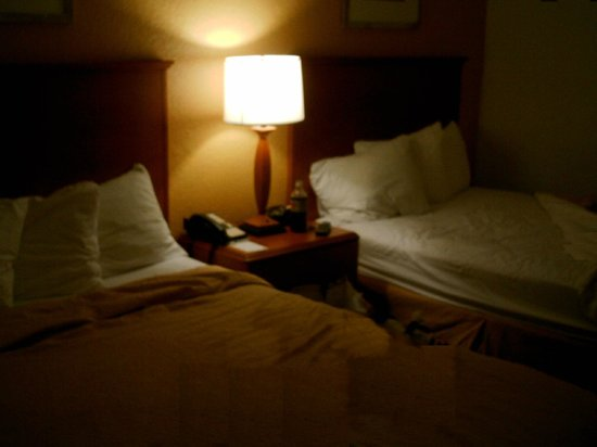 Quality Inn Miami Airport: Comfy beds