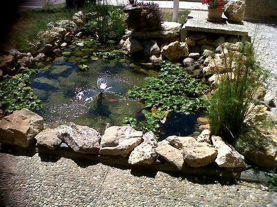 La Villa Martégale : Bac a poissons =)