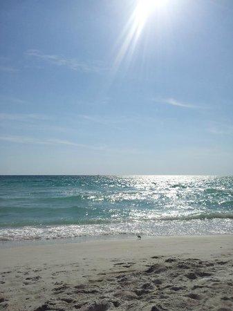 Tradewinds Beach Resort: Beach