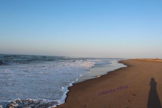 Playamarina Spa Hotel: Playa Punta del Moral