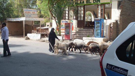 Iberotel Luxor: on the street