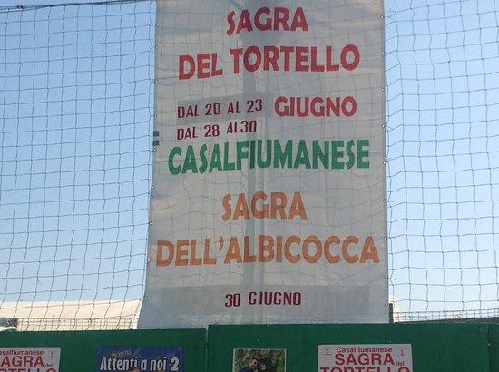Sagra Del Tortello E Della Albicocca