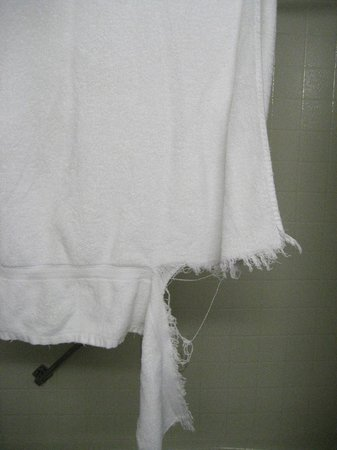 The Rushmore Hotel & Suites: torn towel for our use in bathroom