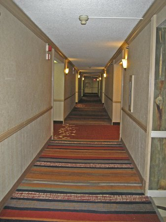The Rushmore Hotel & Suites: hallway