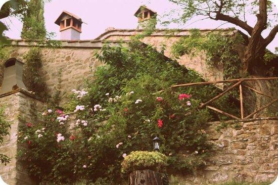 Castellare: Our accomodation!