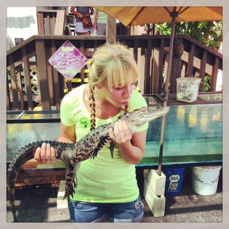 Air Boat USA: Kissing the Gator