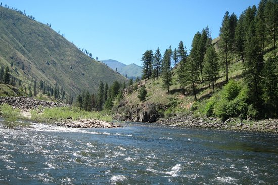 Momentum River Expeditions: Main Salmon River