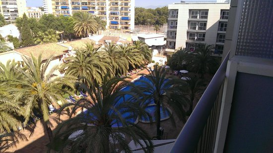 Cosmopolitan: pool view