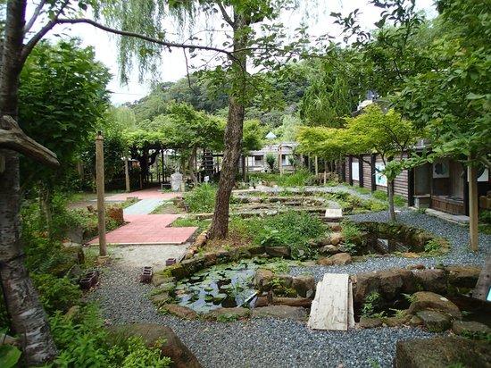 Senpokaku: garden at the back of the hotel