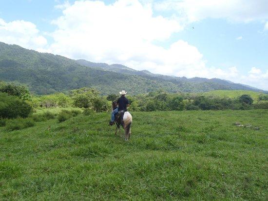 Casa Castejon at Finca el Cisne : Horseback Riding