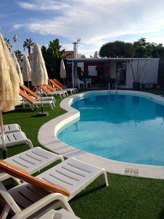 Beach Boys Resort : Pool