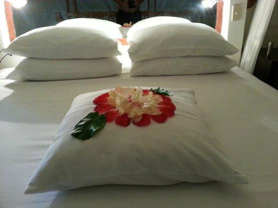Villa del Sol Resort: The room