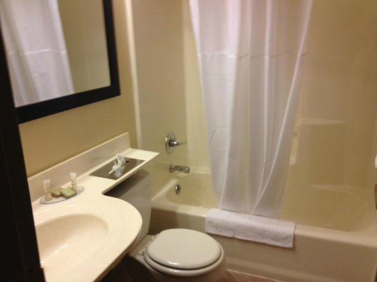 Super 8 Schenect/Albany Area: Great bathroom size