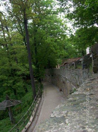Przy Oslej Bramie: taras wzdłuż muru (nie pokojowy), prowadzi pod wieżę zamkową